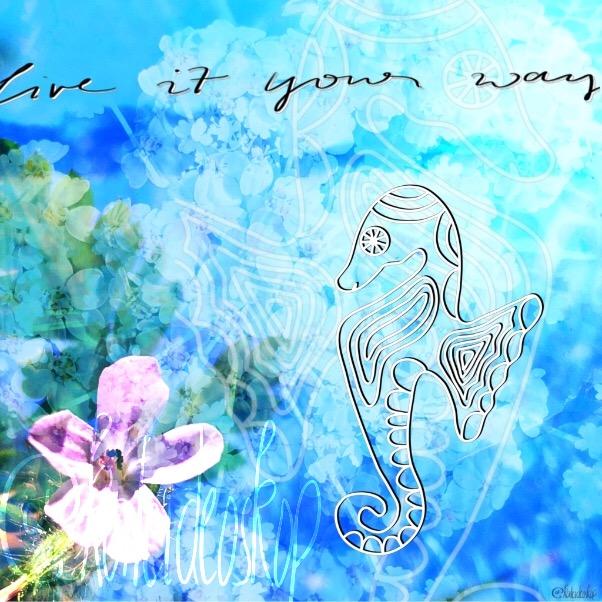 Dreaming seahorse